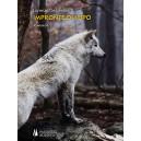 Impronte di lupo