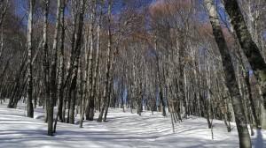 Escursione sul Monte Gorzano (28.01.2018) – recensione